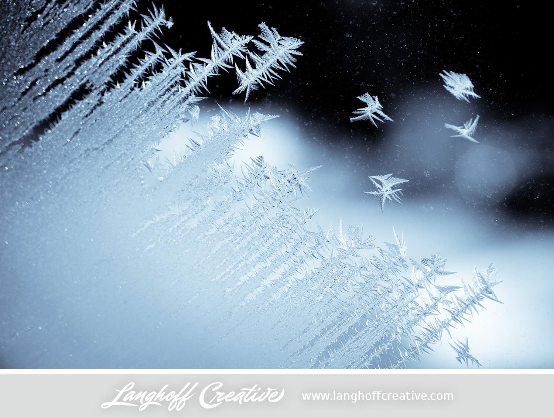 LanghoffCreative-frost-macro-photography_Jan06-2014-photo-17.jpg