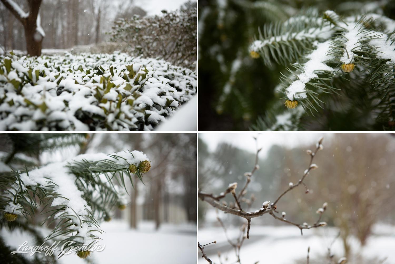 RaleighSnow-Winter-2015-RaleighPhotographer-LanghoffCreative-Snowday-AmberLanghoff-4-photo.jpg