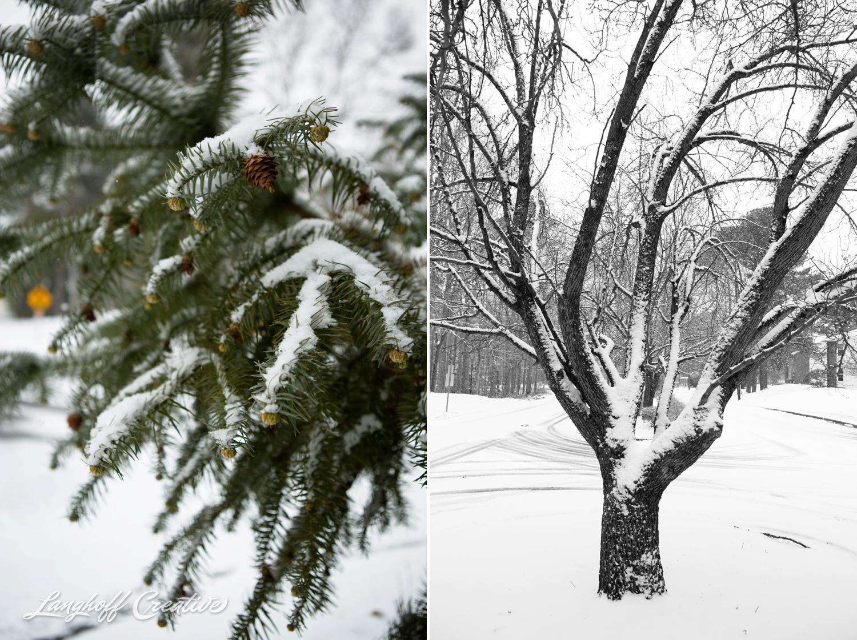 RaleighSnow-Winter-2015-RaleighPhotographer-LanghoffCreative-Snowday-AmberLanghoff-5-photo.jpg
