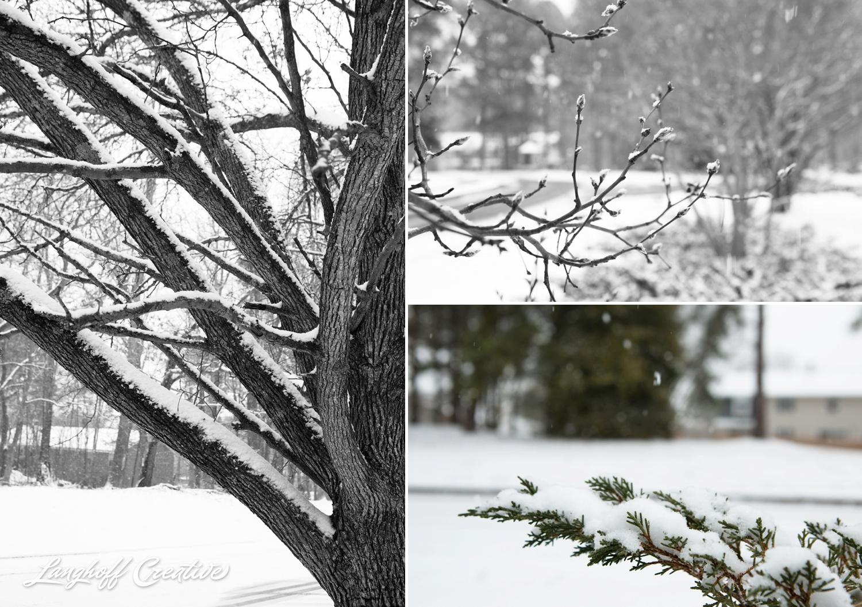 RaleighSnow-Winter-2015-RaleighPhotographer-LanghoffCreative-Snowday-AmberLanghoff-7-photo.jpg