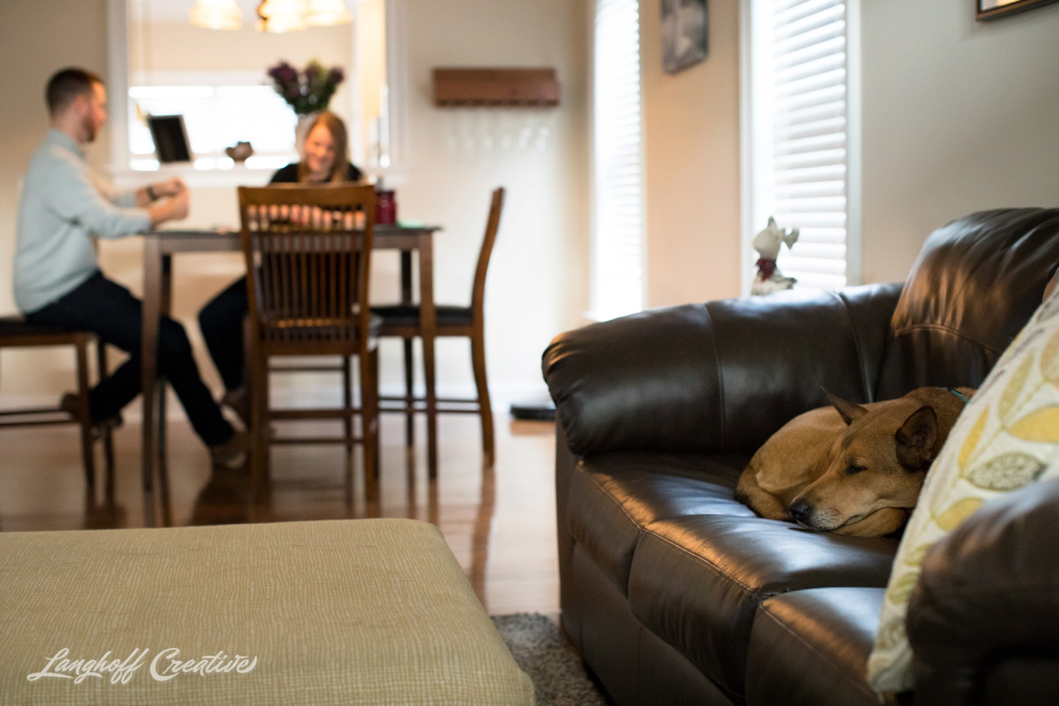 20171118-ByrdChristmas-Dogs-Holidays-LanghoffCreative-RealLifeSession-DocumentaryFamilyPhotography-RDUphotographer-7-photo.jpg