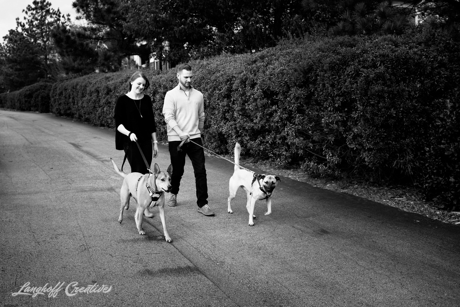 20171118-ByrdChristmas-Dogs-Holidays-LanghoffCreative-RealLifeSession-DocumentaryFamilyPhotography-RDUphotographer-8-photo.jpg