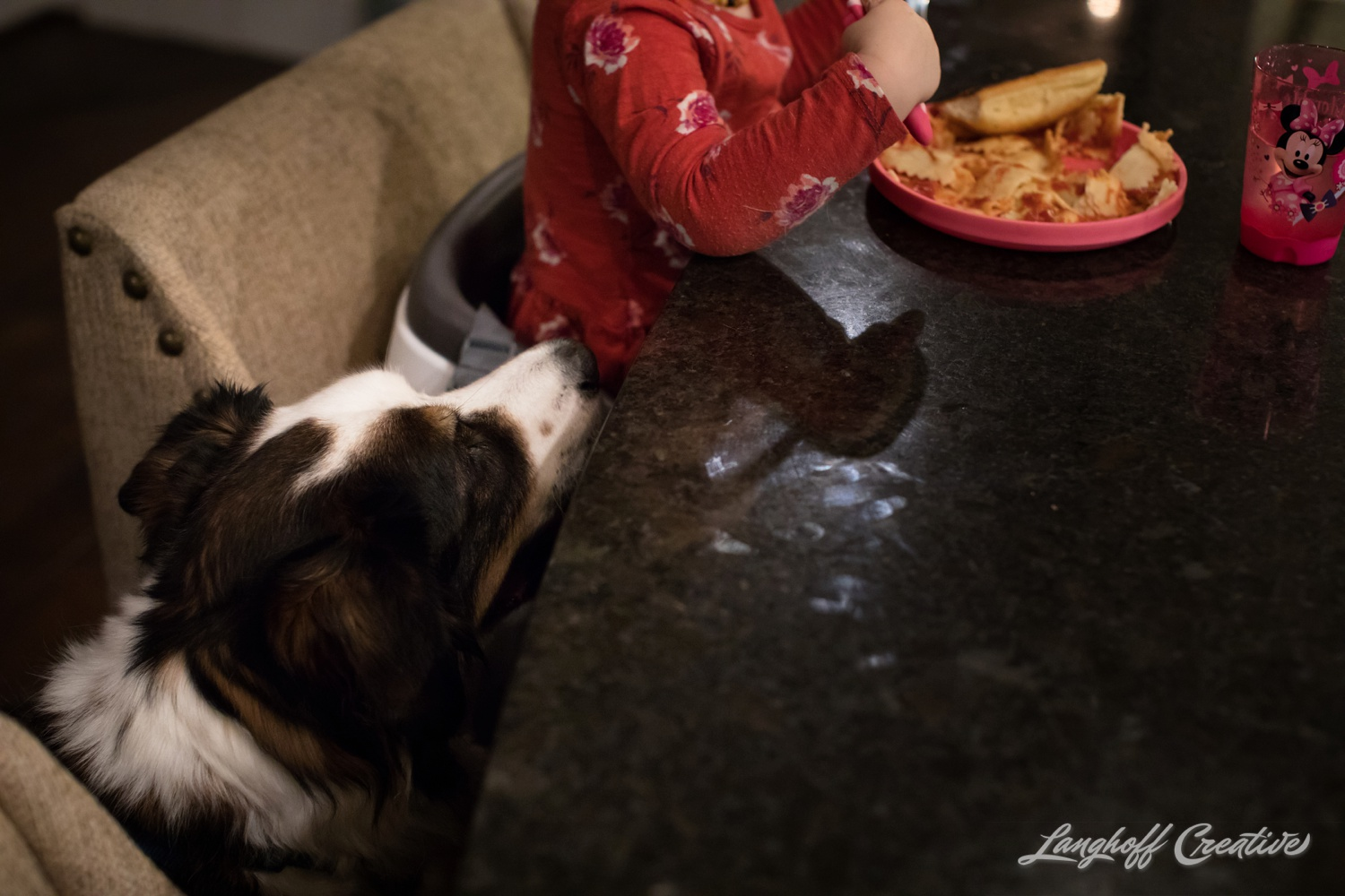 20171125-McGrathChristmas-DayInTheLife-Holidays-LanghoffCreative-RealLifeSession-DocumentaryFamilyPhotography-RDUphotographer-26-photo.jpg