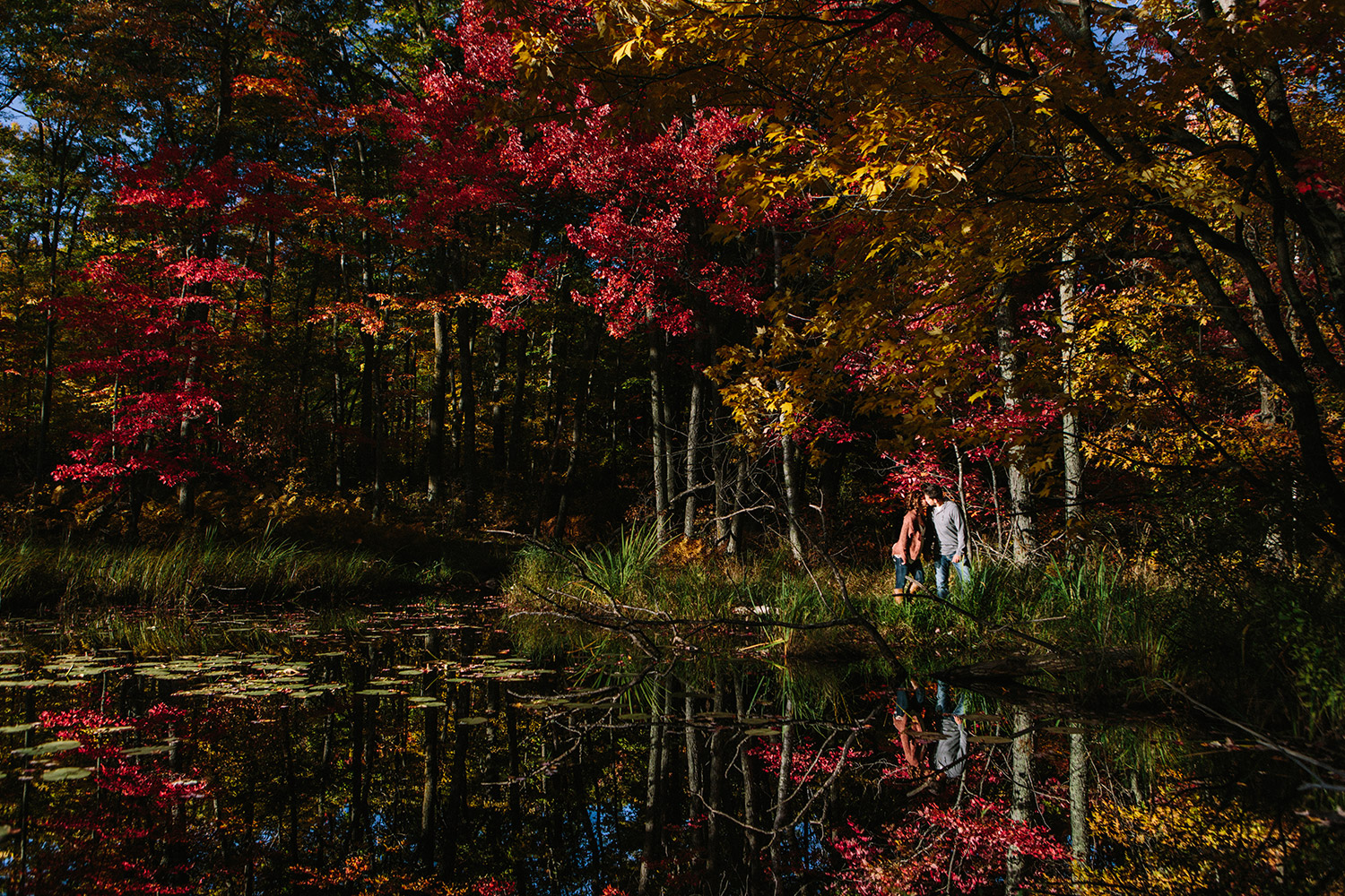 northern_mn_forest_fall_engagement_session_07.jpg