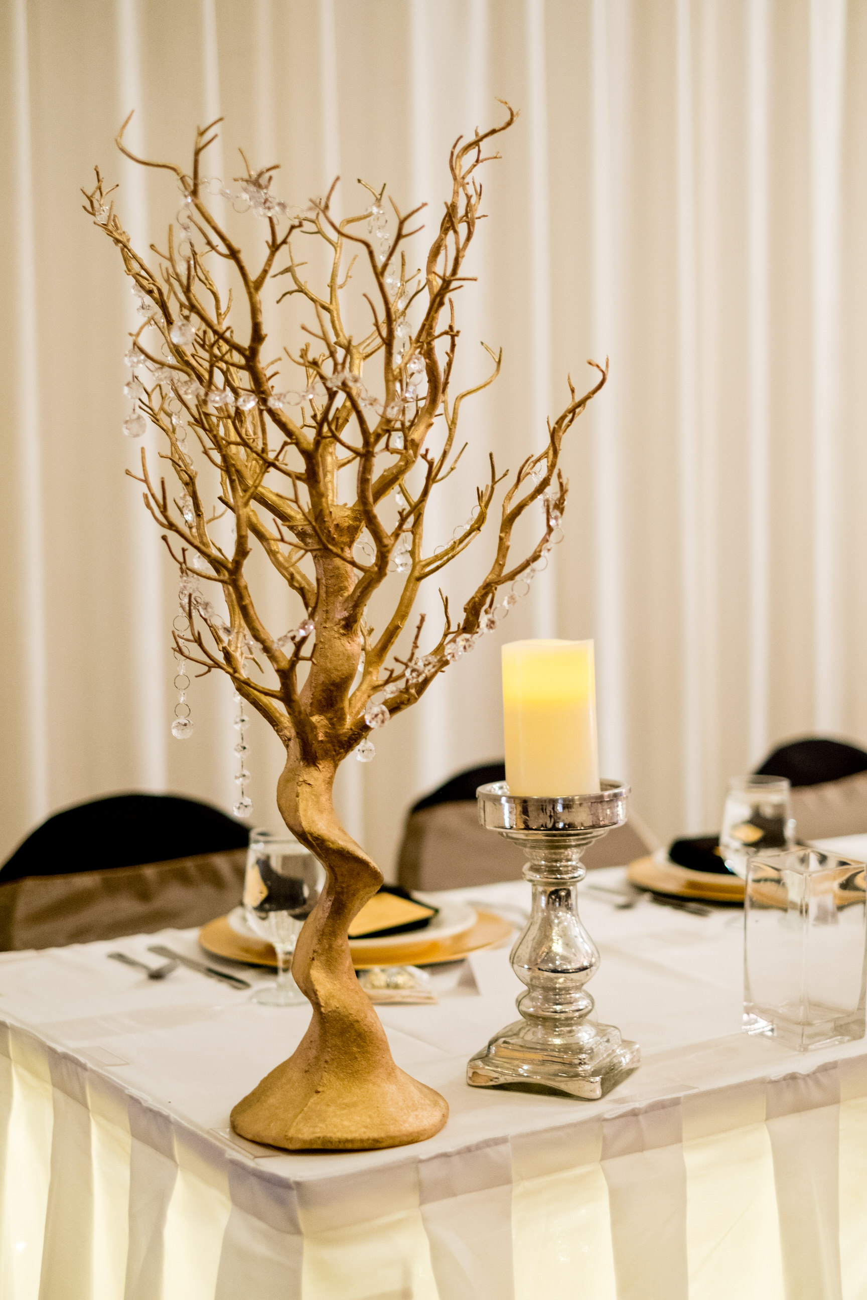 pine peaks event center wedding reception