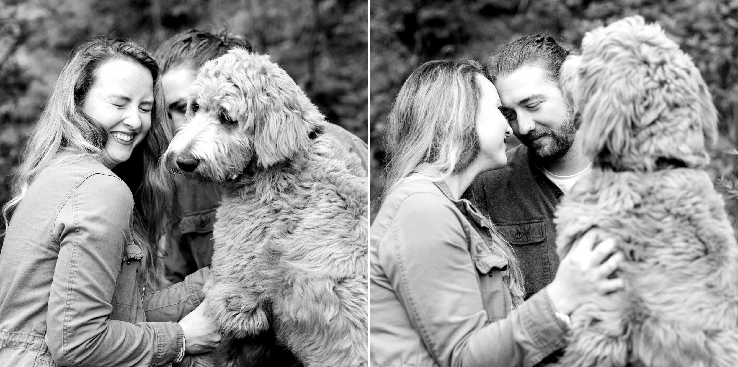 Dog Engagement Session