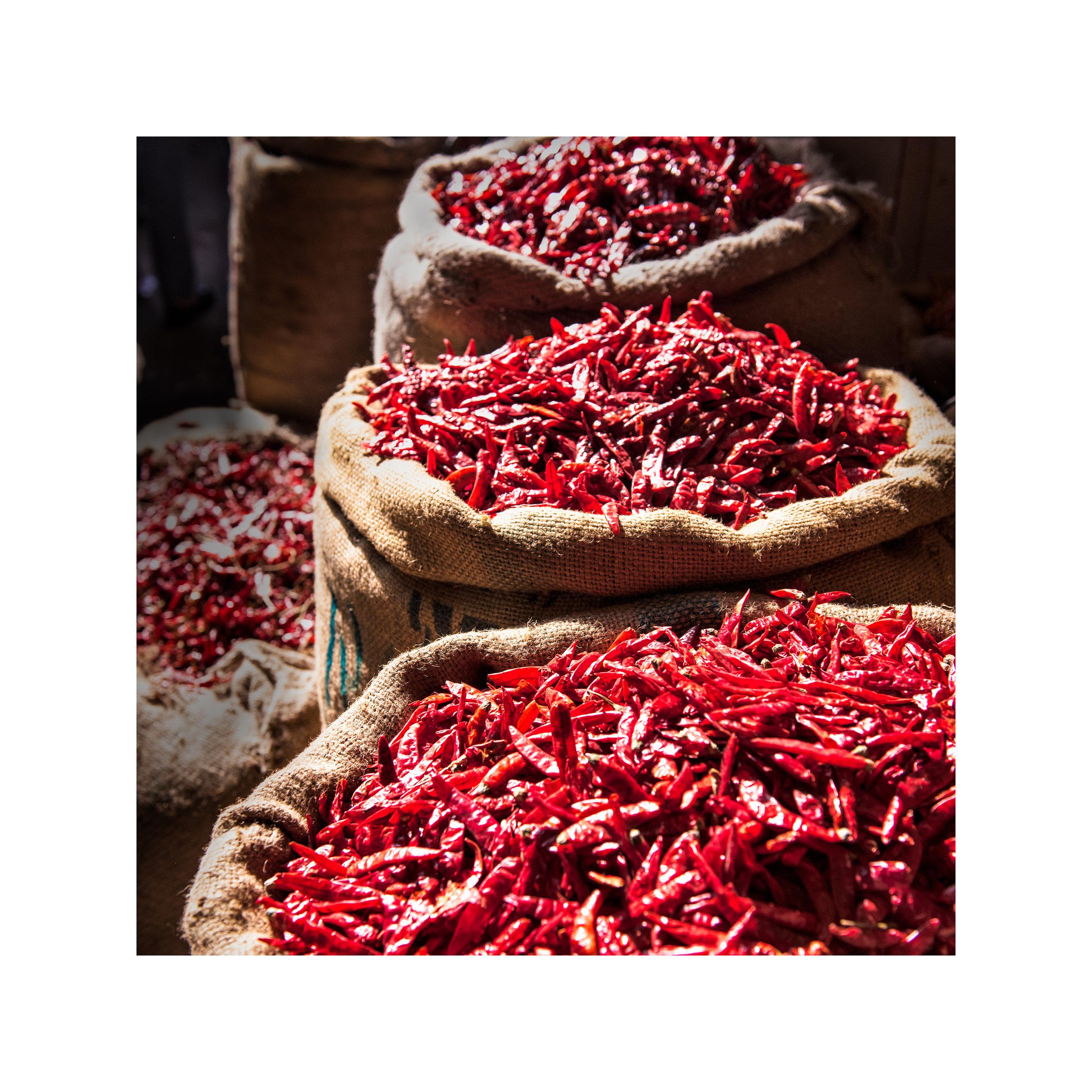 161225 Indian Food Fair for fineartpaper_©k.maestudio_©kayakosareen-4.jpg