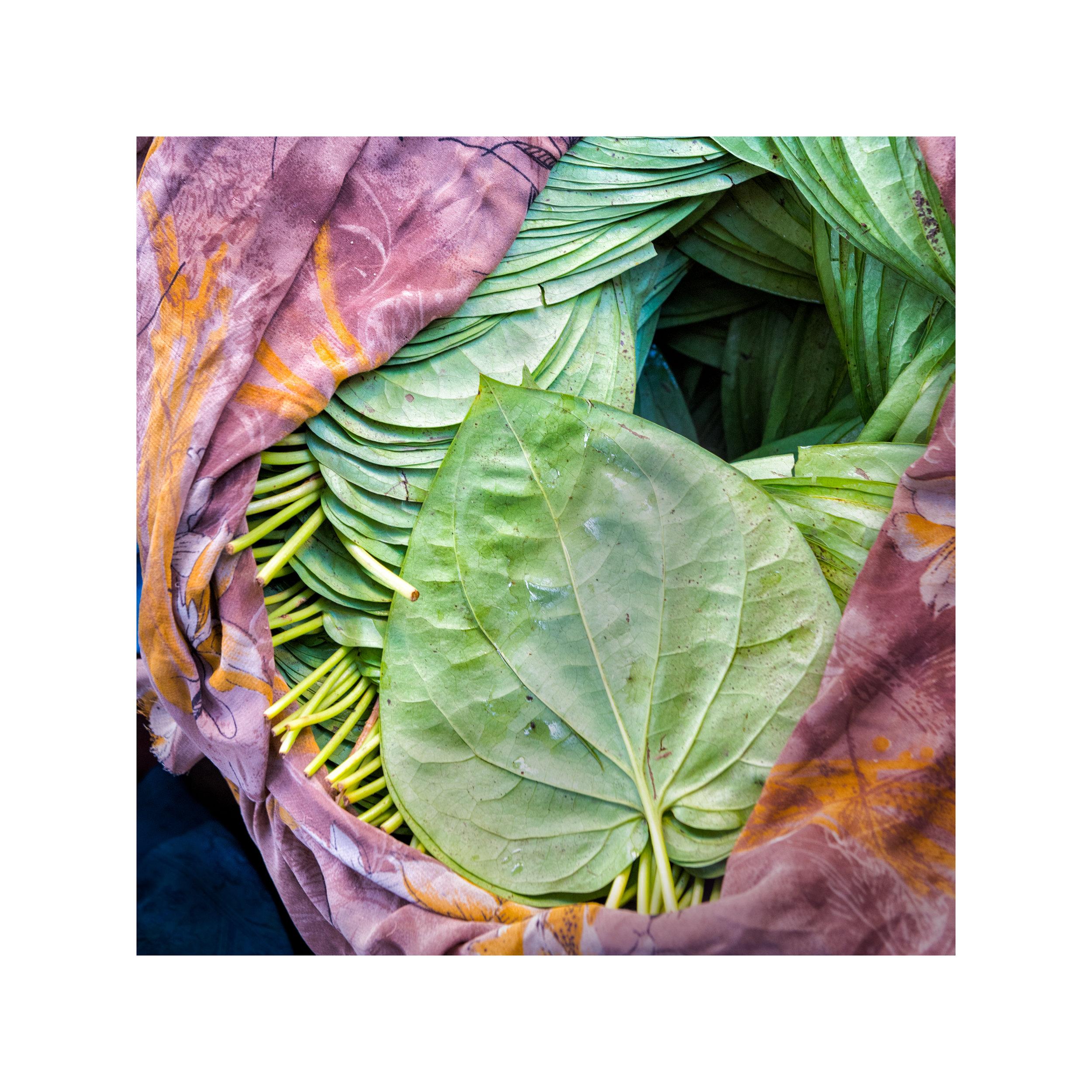 161225 Indian Food Fair for fineartpaper_©k.maestudio_©kayakosareen.jpg