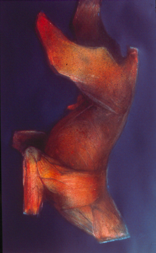 "Hanging Red Dog           monoprint, image: 27"" x17""  private collection"