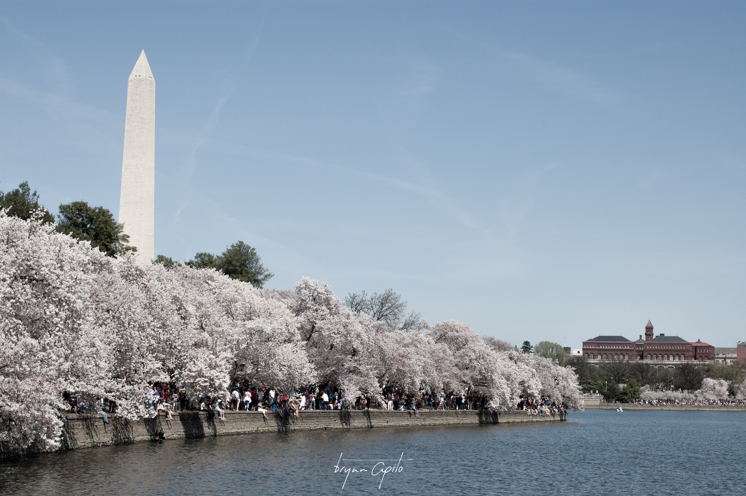 WashingtonDC-23.jpg