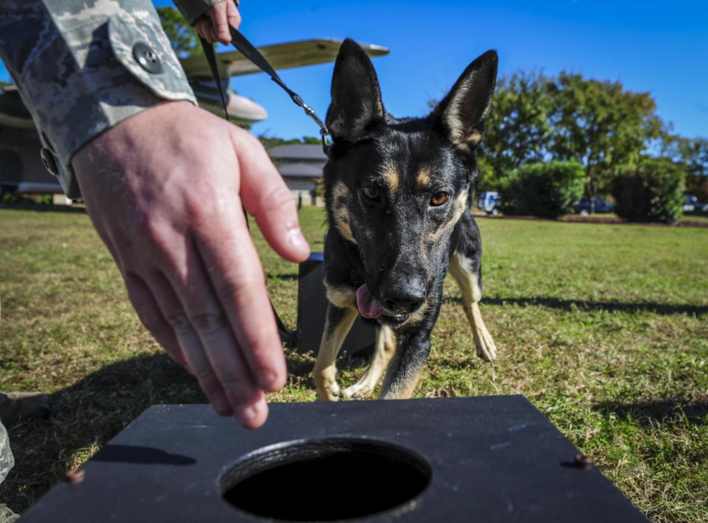 U.S. Air Force photo by Senior Airman Meagan Schutter