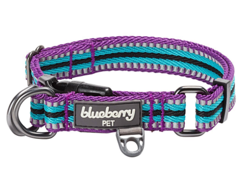 Blueberry Quick Release Collar