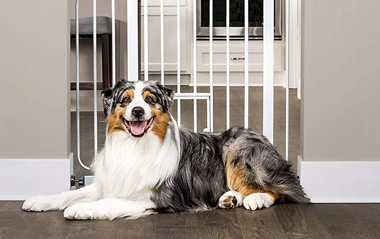 Carlson Extra Wide Walk-Through Pet Gate