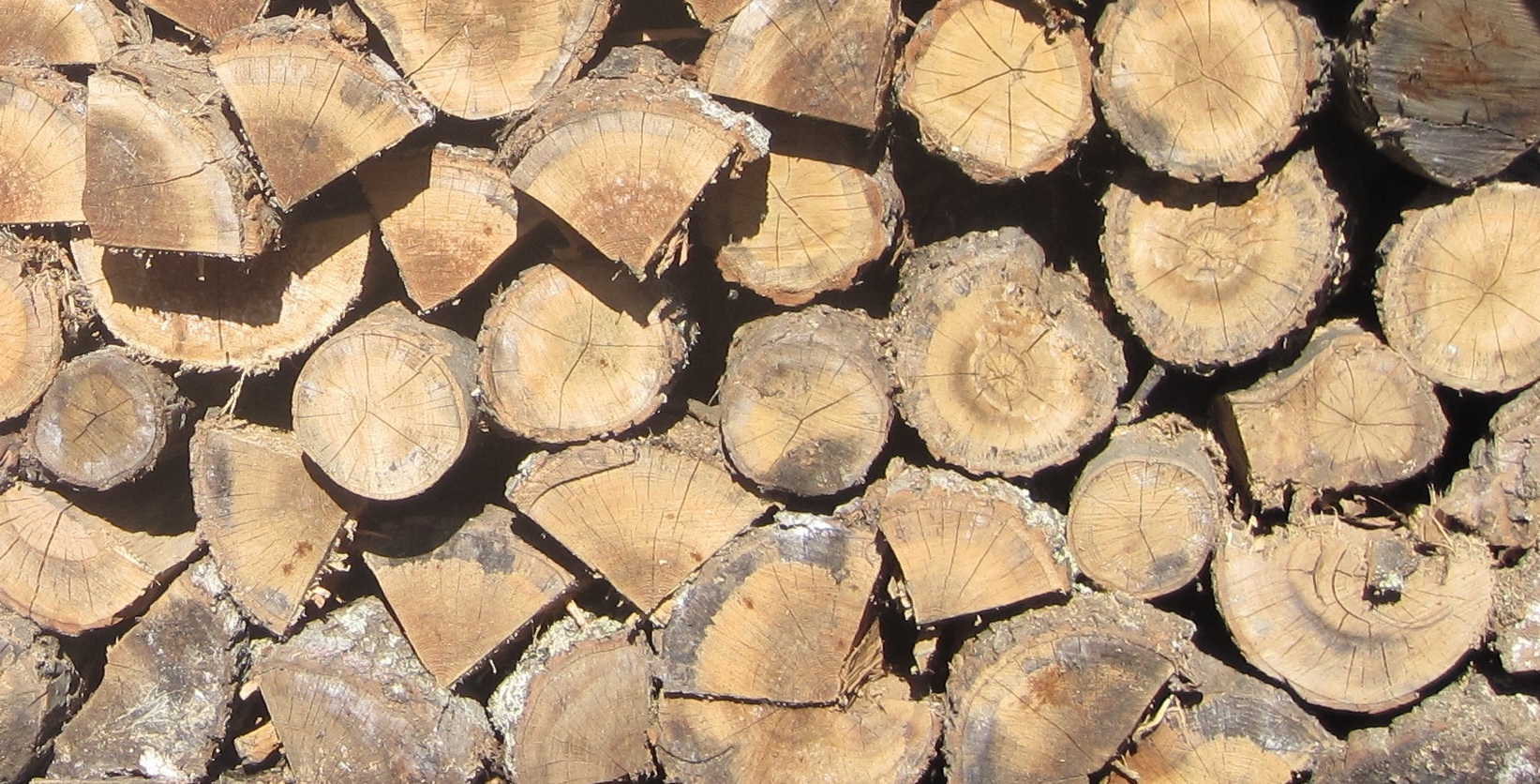 stacked firewood close up.JPG
