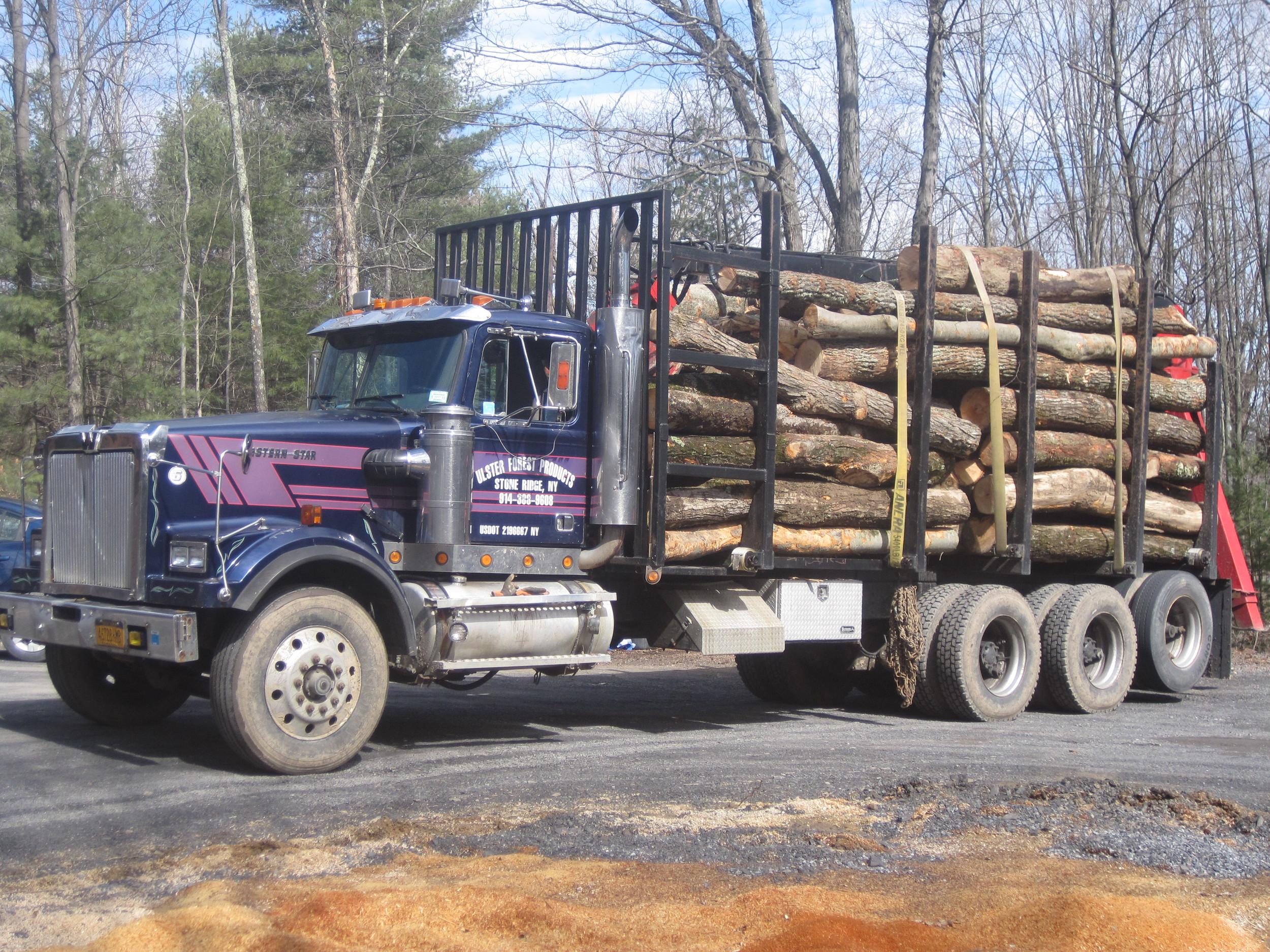 western star with firewood.JPG