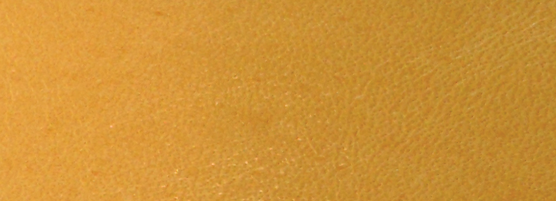 Danger Yellow NL