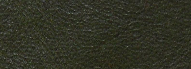 Dark Green WY