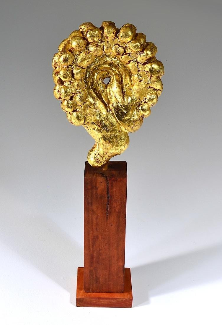 Common Gold (Calendula officinalis)
