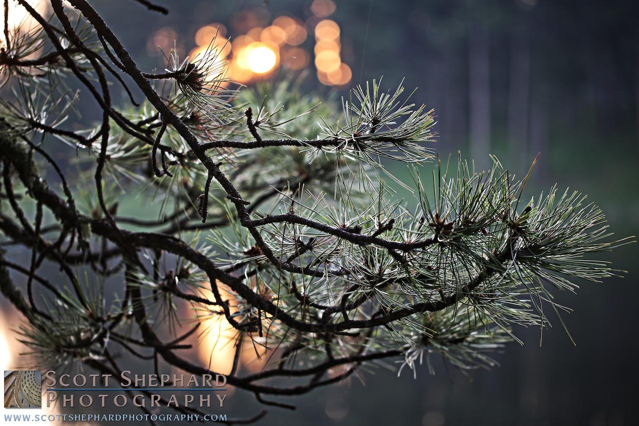 2014 07-21 Lake Lakota Morning by Watertown, South Dakota, photographer Scott Shephard