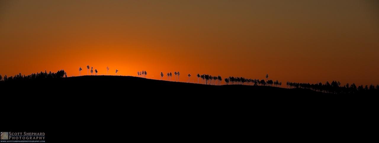 2014 09-01 Tree Line by Watertown, South Dakota, photographer Scott Shephard