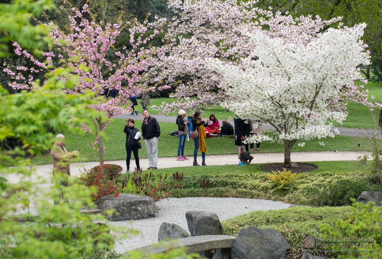 Kew Gardens, London.jpg