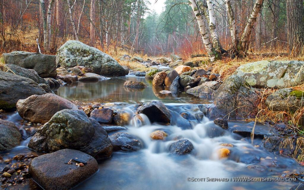2009 02-28 Iron Creek In Spring