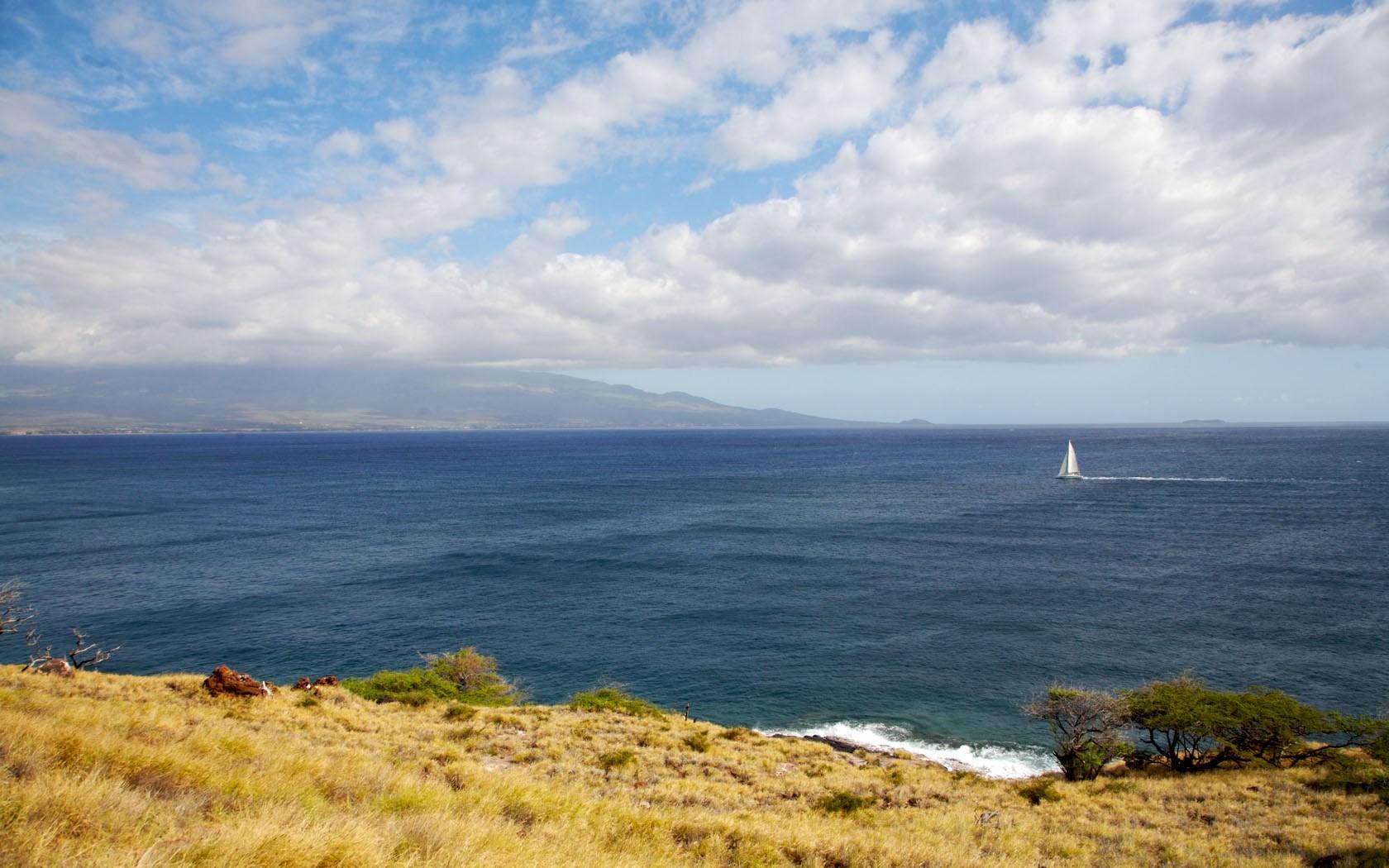 2009 05-17 Maui Seascape.jpg