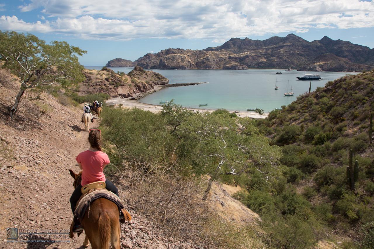 Baja Mexico 2015-4495.jpg
