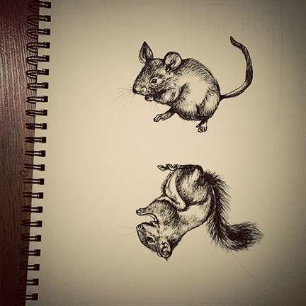 mouserat.jpg