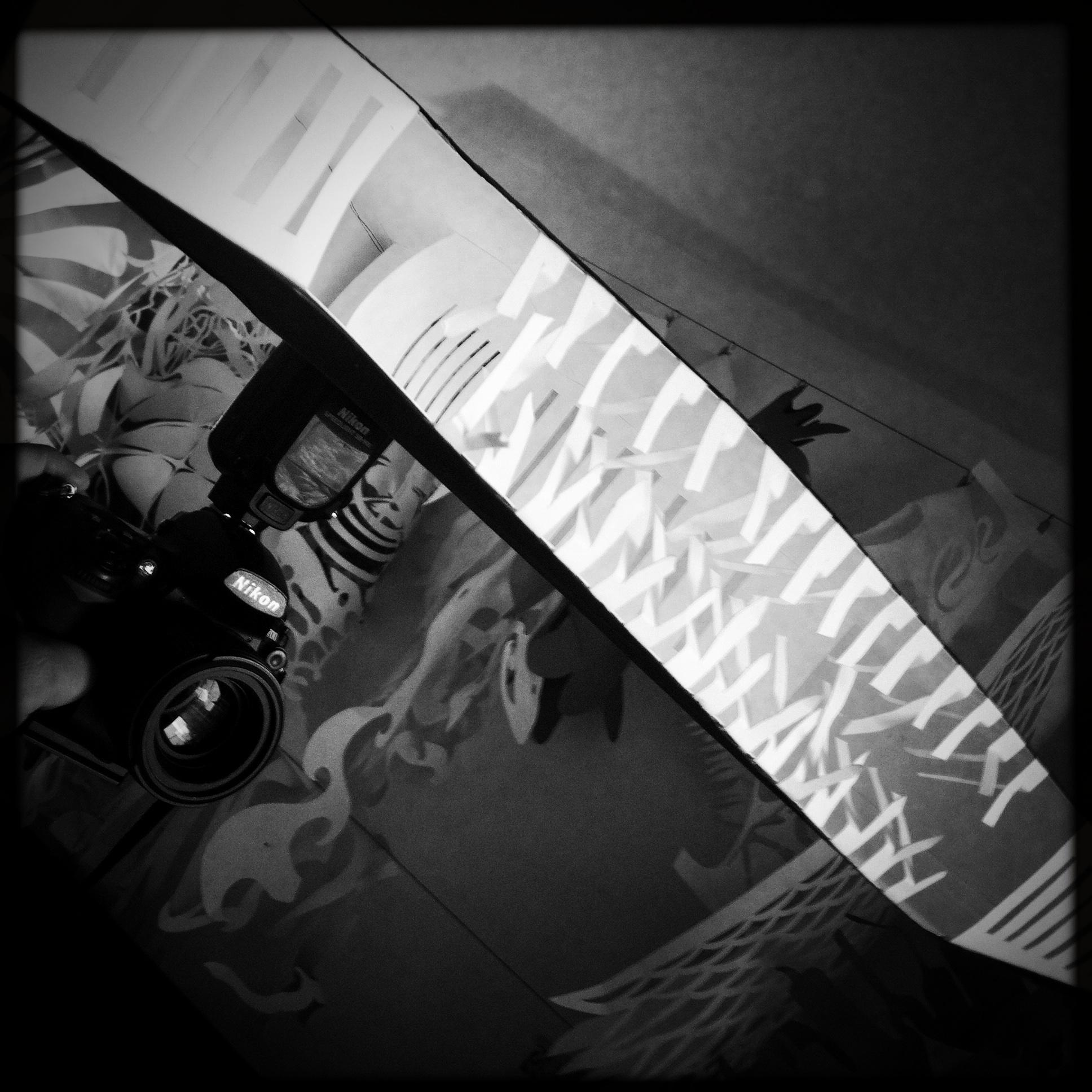 © Matt Hill  Hand-made paper light modifier I call  The SOft Wide Grin