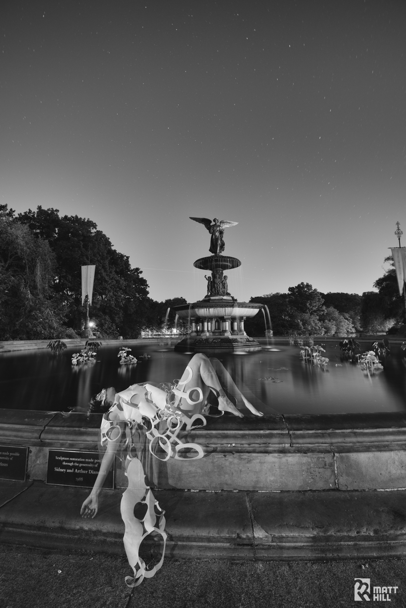 Iris Explosion at Bethesda Fountain, Central Park NYC