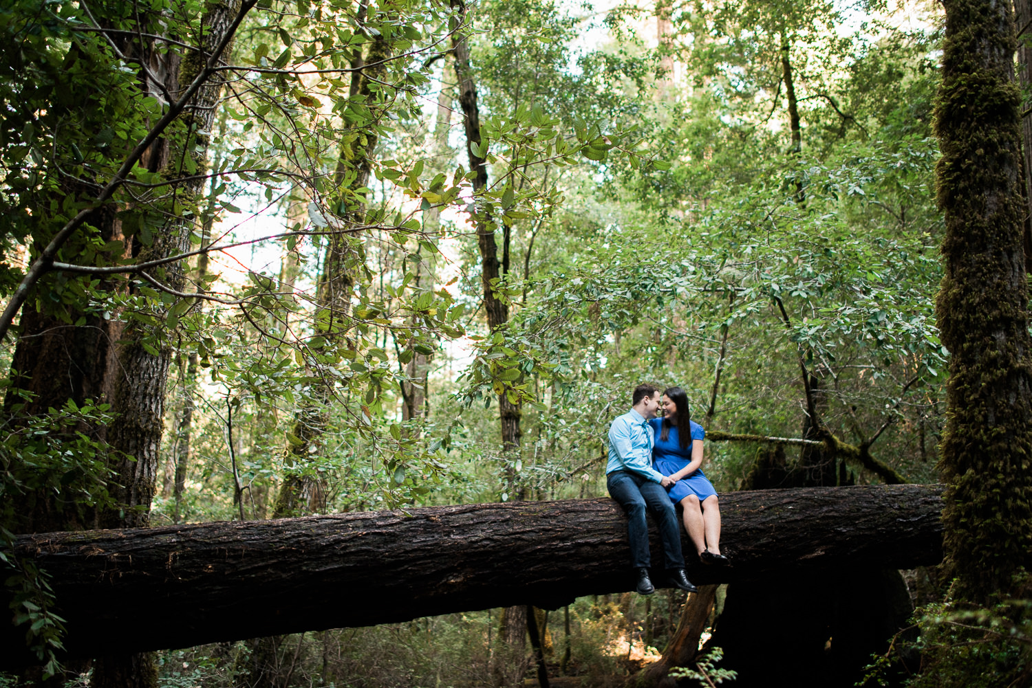 Big Basin Engagement Session by Annie Hall Photography.jpg