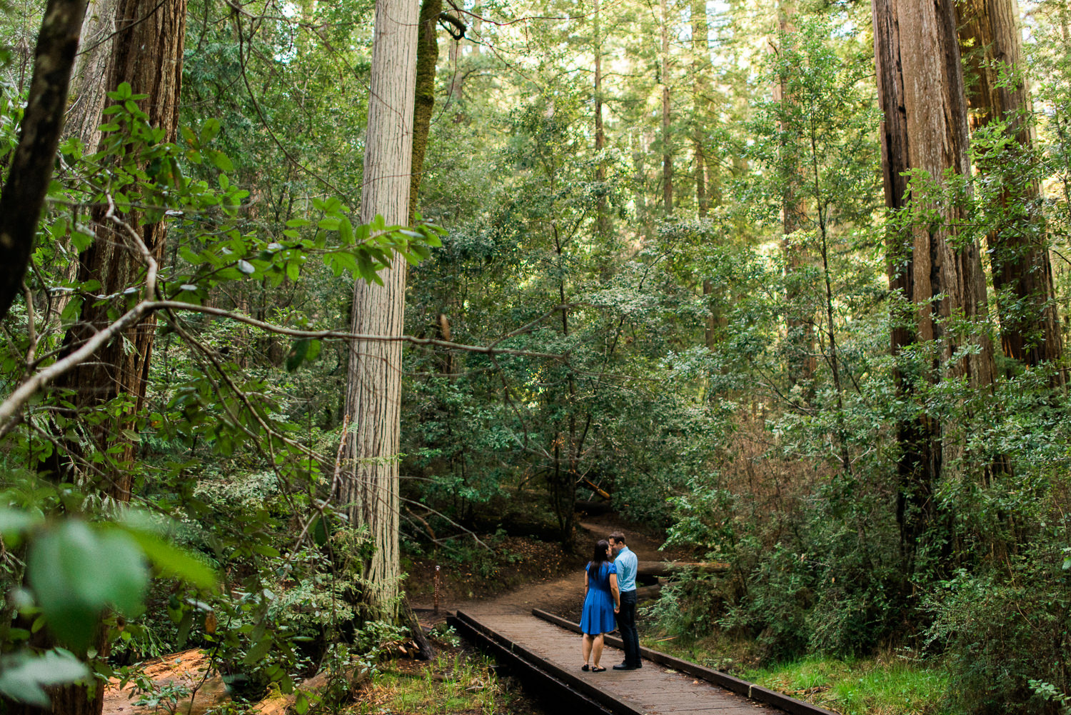 BIg Basin Redwoods State Park Engagement Session 002.jpg
