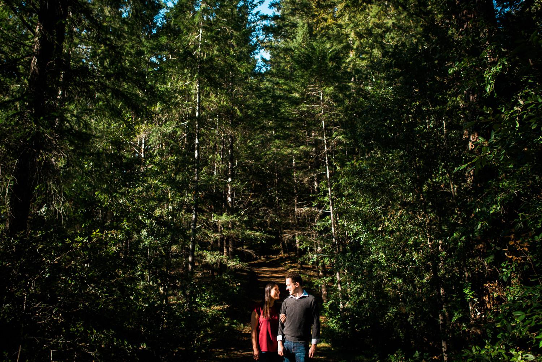 BIg Basin Redwoods State Park Engagement Session 018.jpg