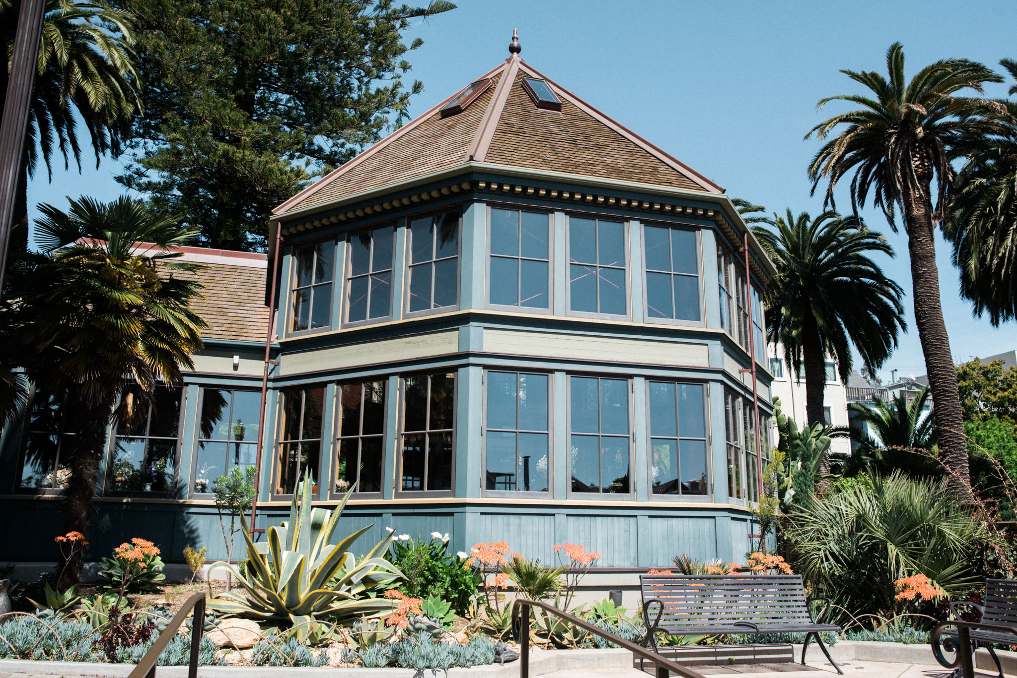 Sunnyside Conservatory Wedding-16.jpg