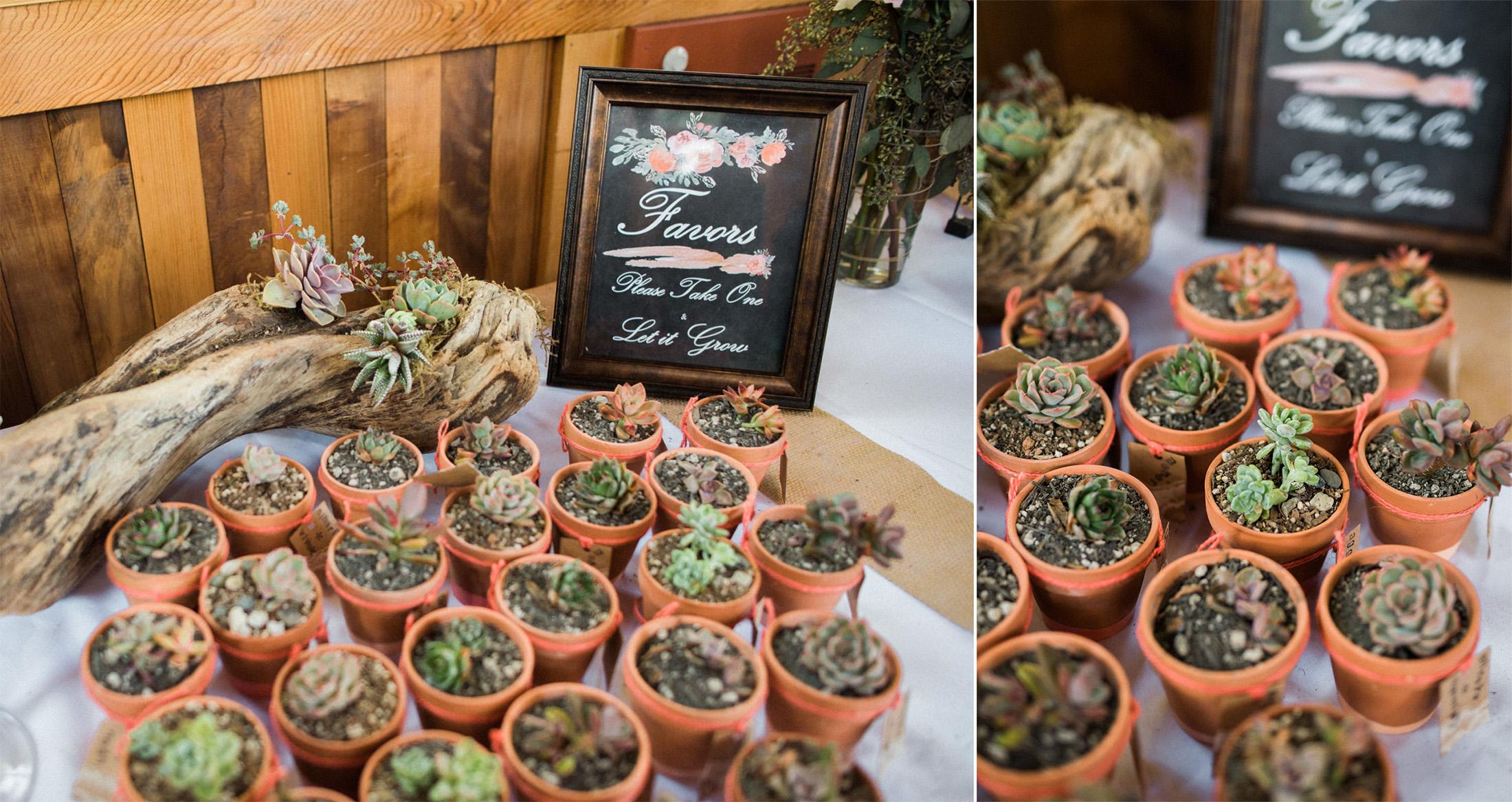 Sunnyside Conservatory Wedding-20.jpg