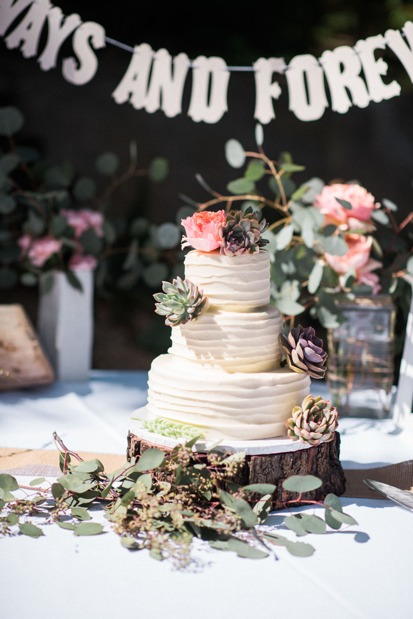 Sunnyside Conservatory Wedding-42.jpg