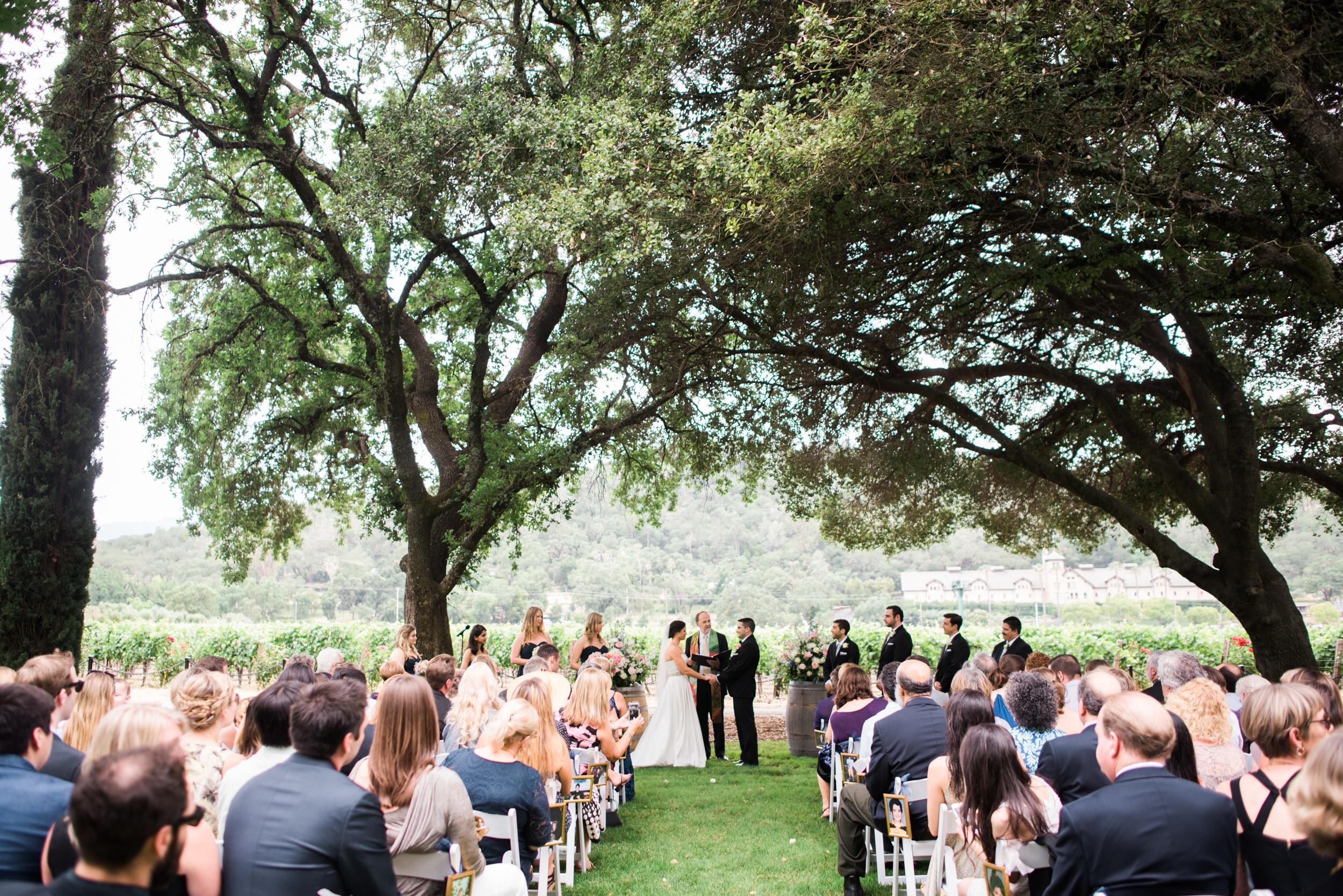 Charles Krug Winery Wedding 024.jpg