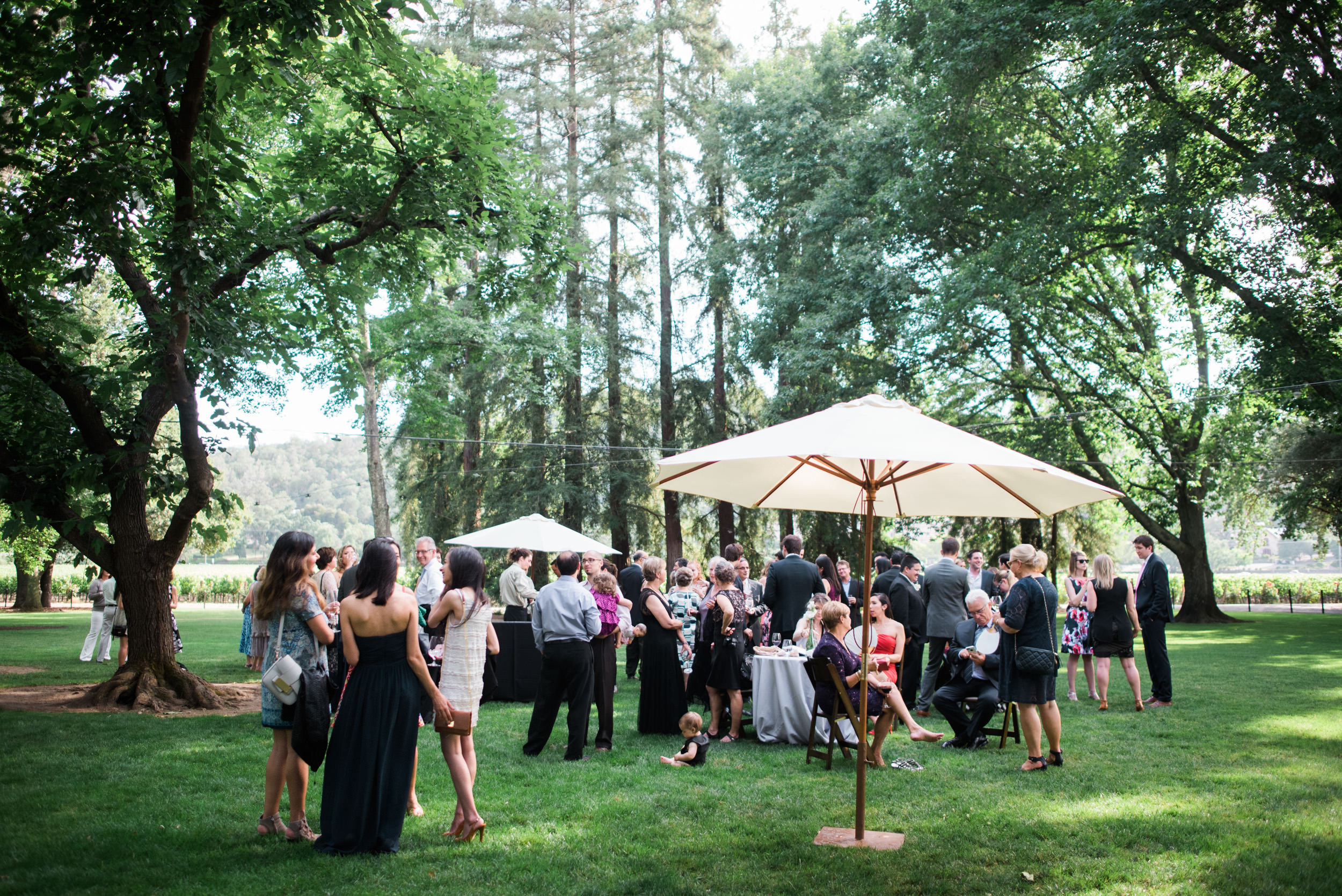 Charles Krug Winery Wedding 041.jpg