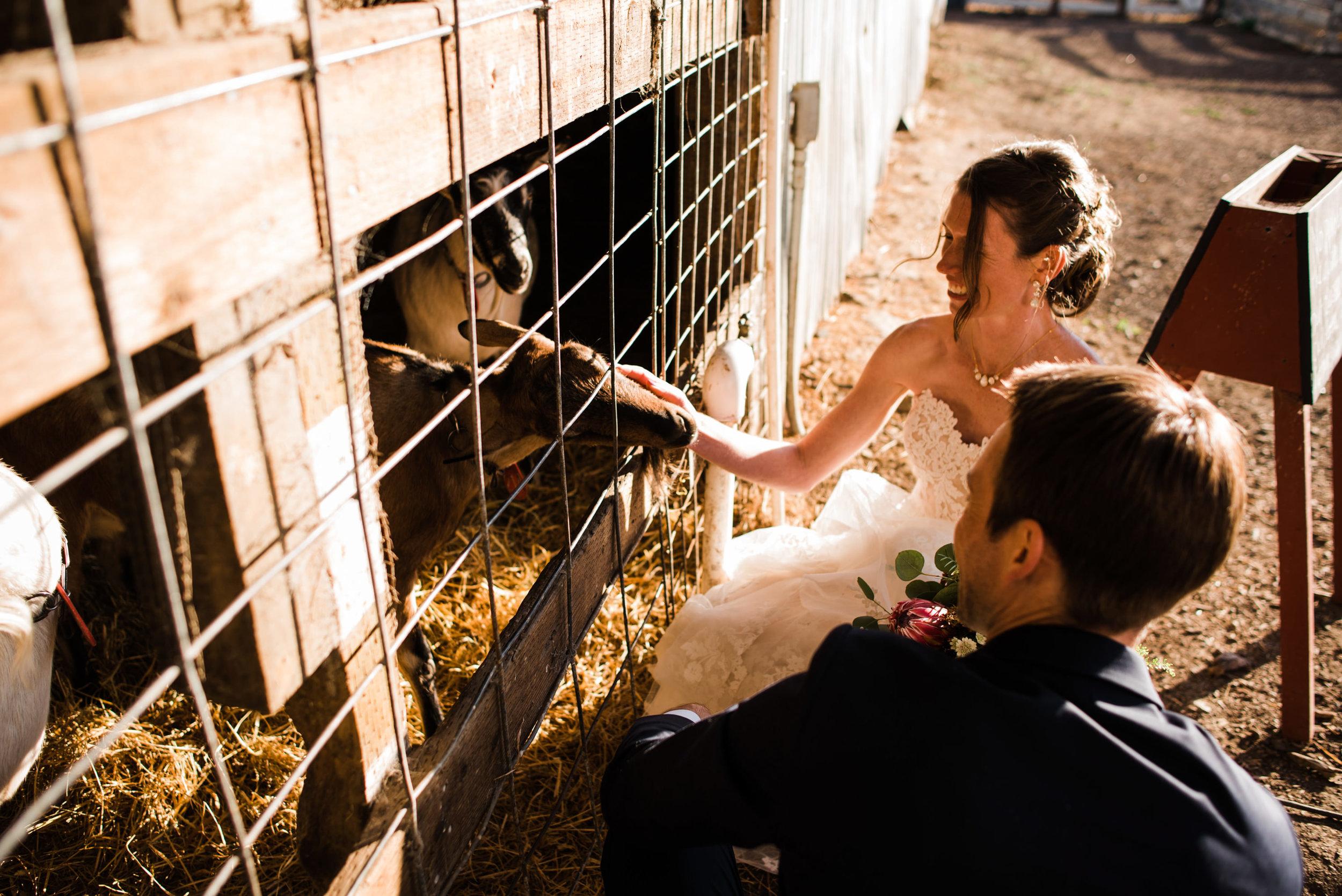 Harley Farms Wedding-67.jpg
