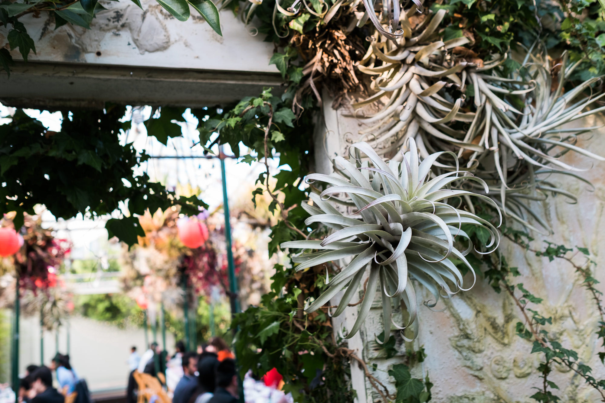 Shelldance Orchid Gardens Wedding 074.jpg