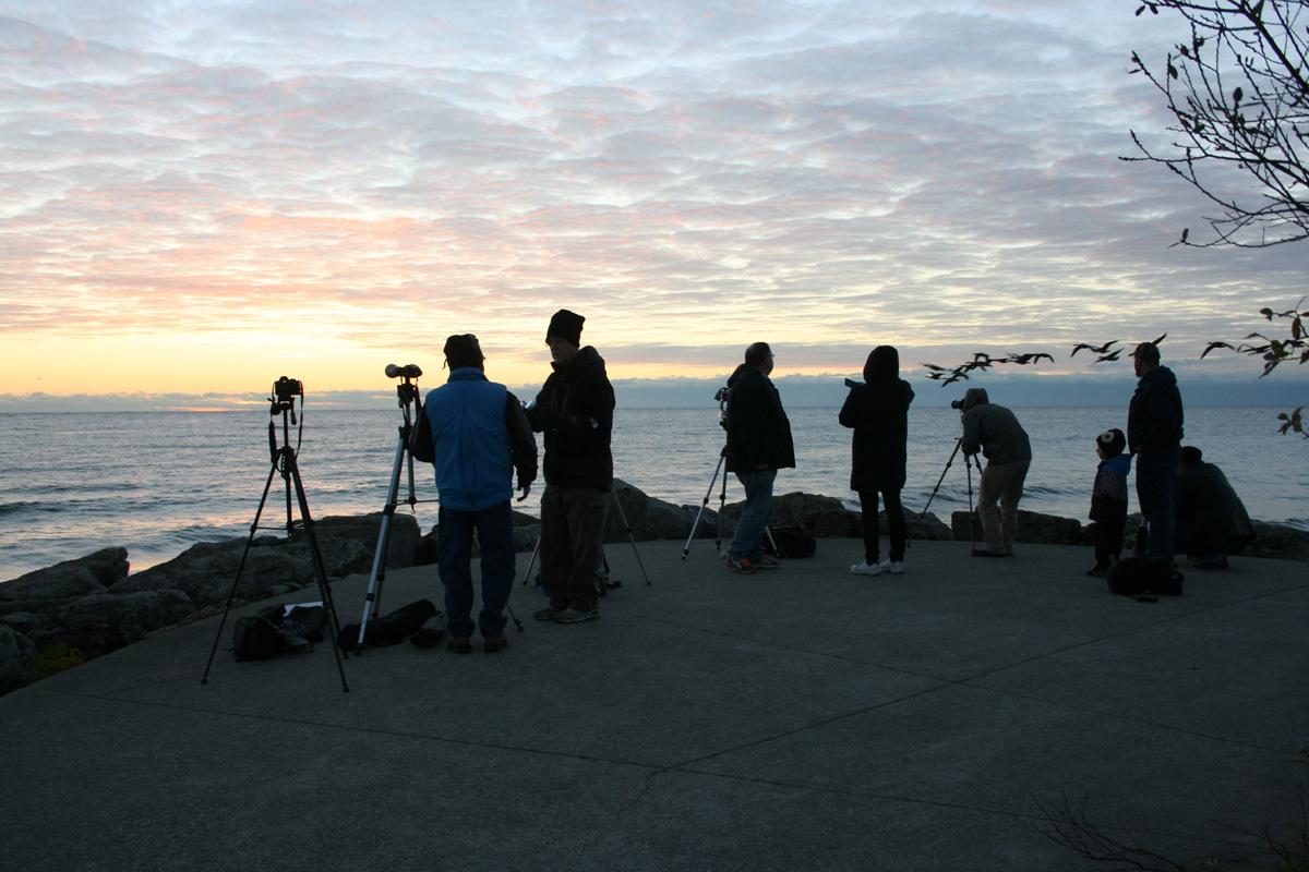 Waiting for sunrise at Jack Darling Park, Mississauga. Photo by Liz Malicki