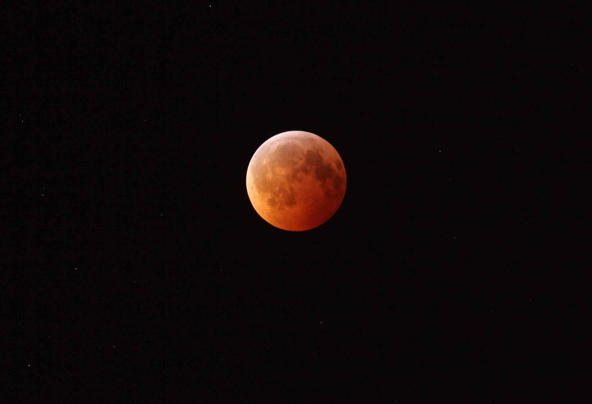 The December 2010 Total Lunar Eclipse. Photo by Randy Attwood