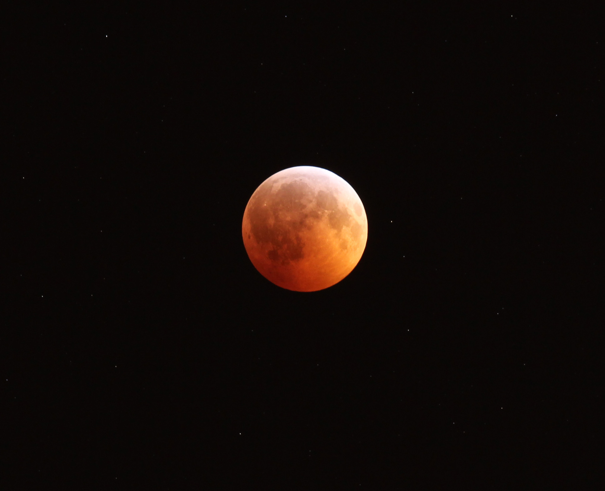 The Moon during total eclipse in 2010. Photo by Randy Attwood