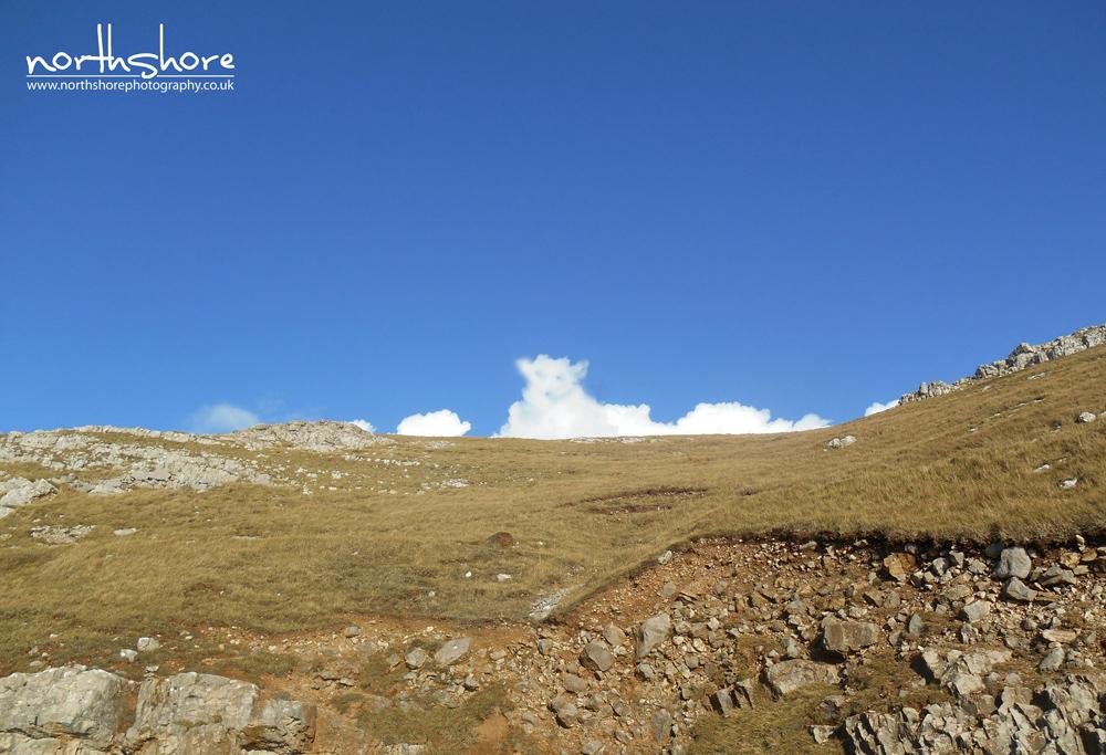 Great-Orme-Llandudno-lamb-picture.jpg