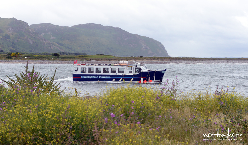 Sightseeing-Cruise-Conwy-picture.jpg