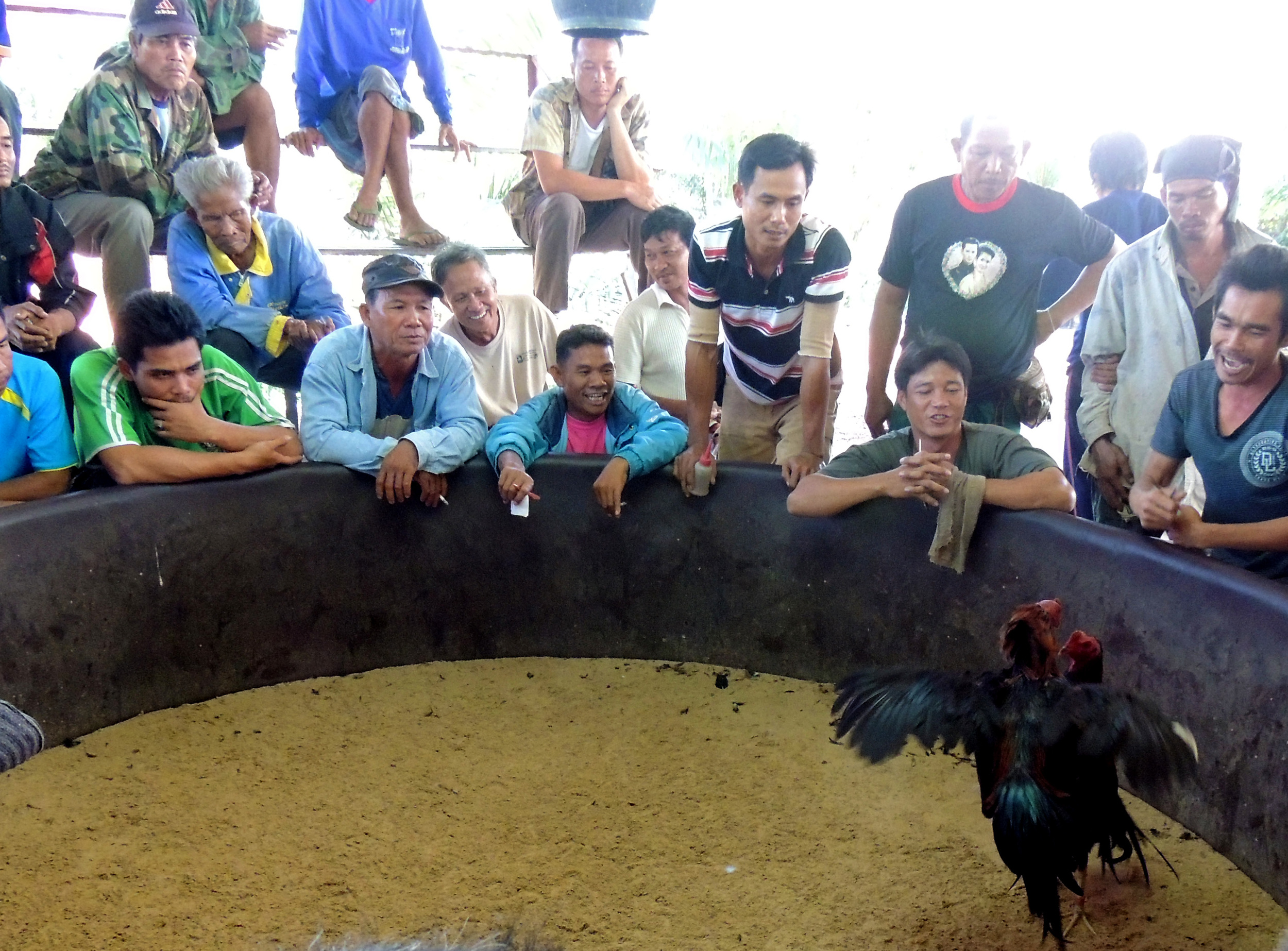 A cock pit in Ban Ph