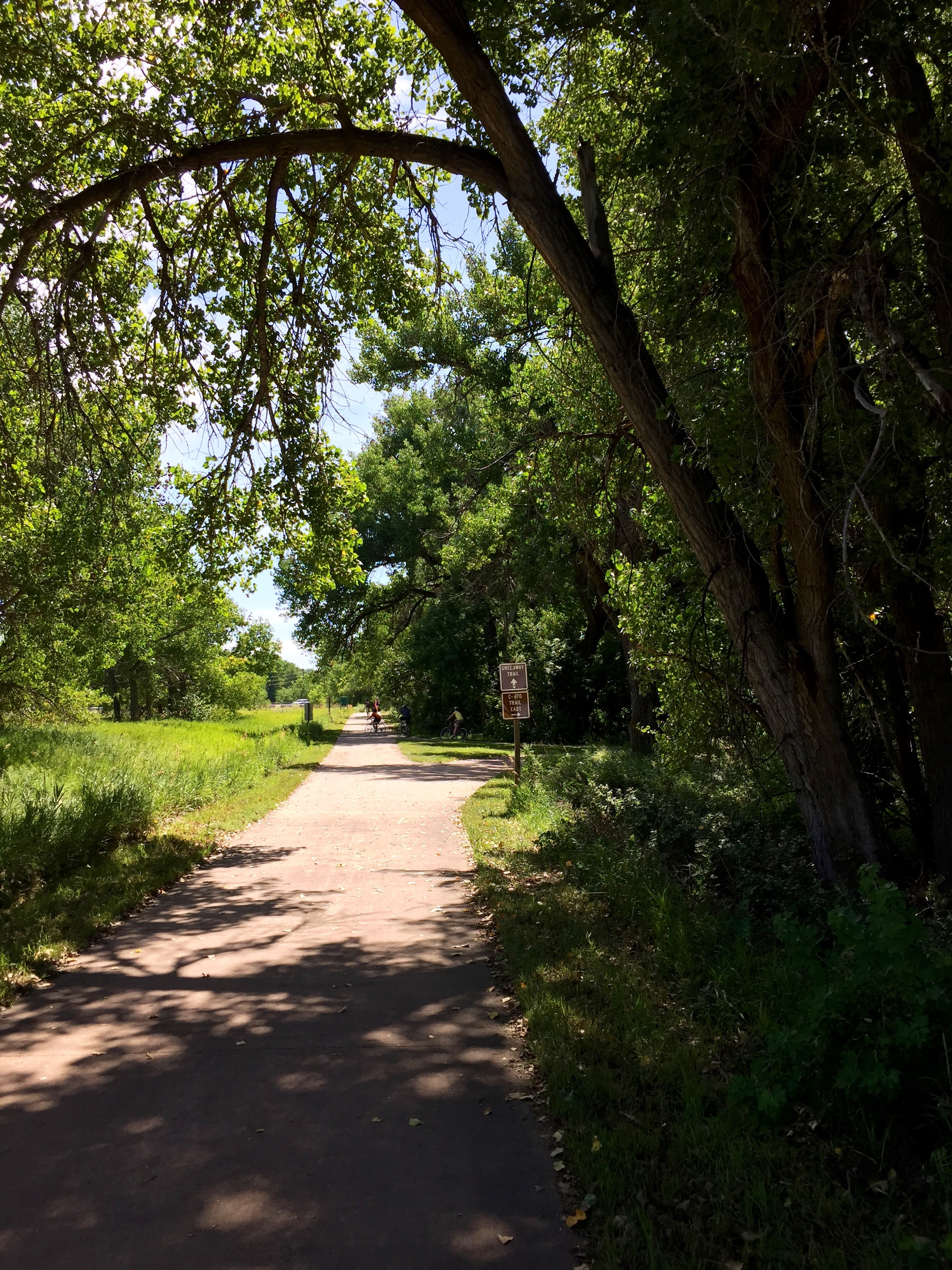The trail picks up some shade as it switches from the C-470 Trail to the Mary Carter Greenway