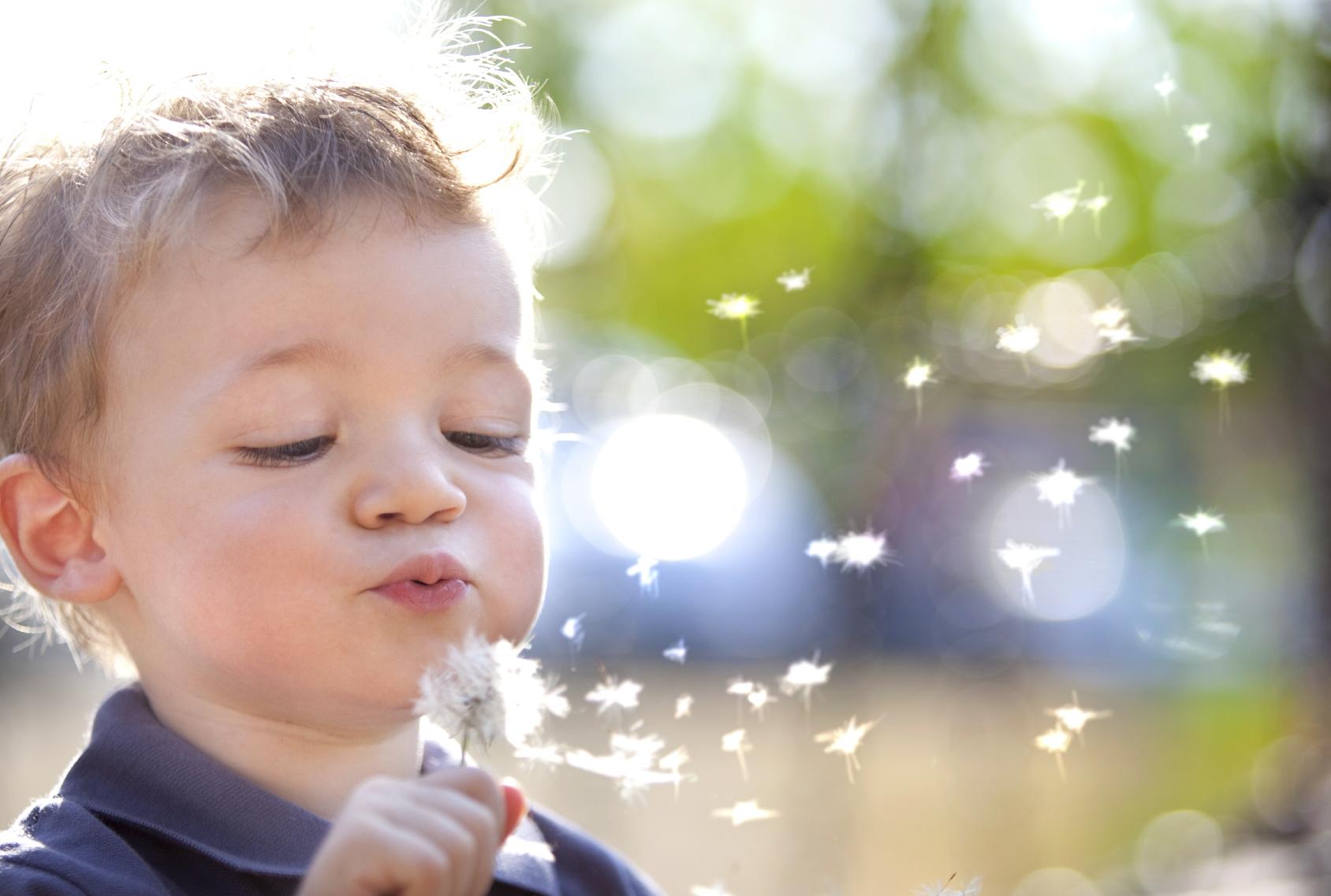 boy blowing dandelion.jpg