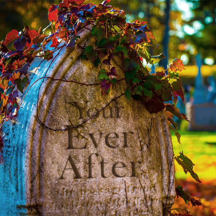 Your Ever After